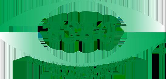 ESEG - Equipamentos de Segurança EPIS e luvas de aço - Ponta Grossa
